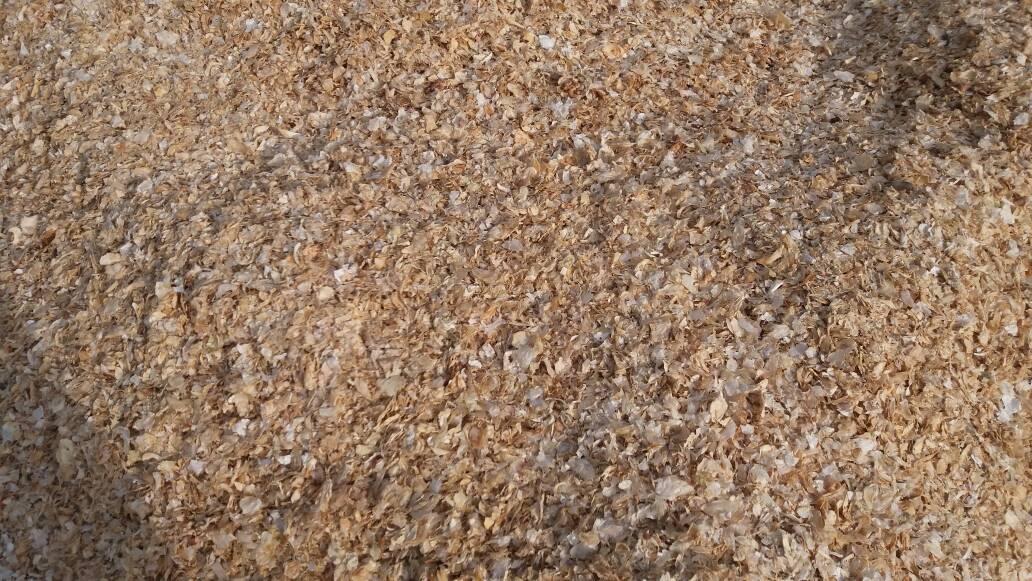 روش تولید پیاز خشک گرانولی سفید