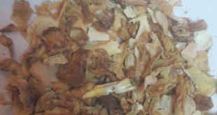 پیاز خشک شده با پوست مخصوص آسیاب