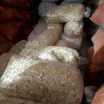 خرید و فروش پیاز خشک