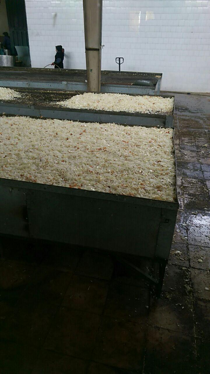 کارخانه تولید پیاز خشک