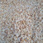تولید سیر خشک