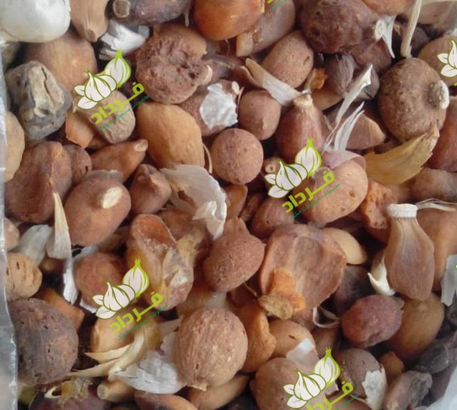 قیمت پودر سیر دامی