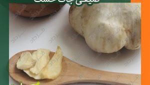 خرید مناسب ترین قیمت سیر خشک